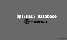 Permalink ke Membersihkan Sampah di Situs WordPress