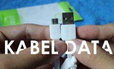 Permalink ke Review Kabel Data Bisa Bolak Balik ROBOT RDM100