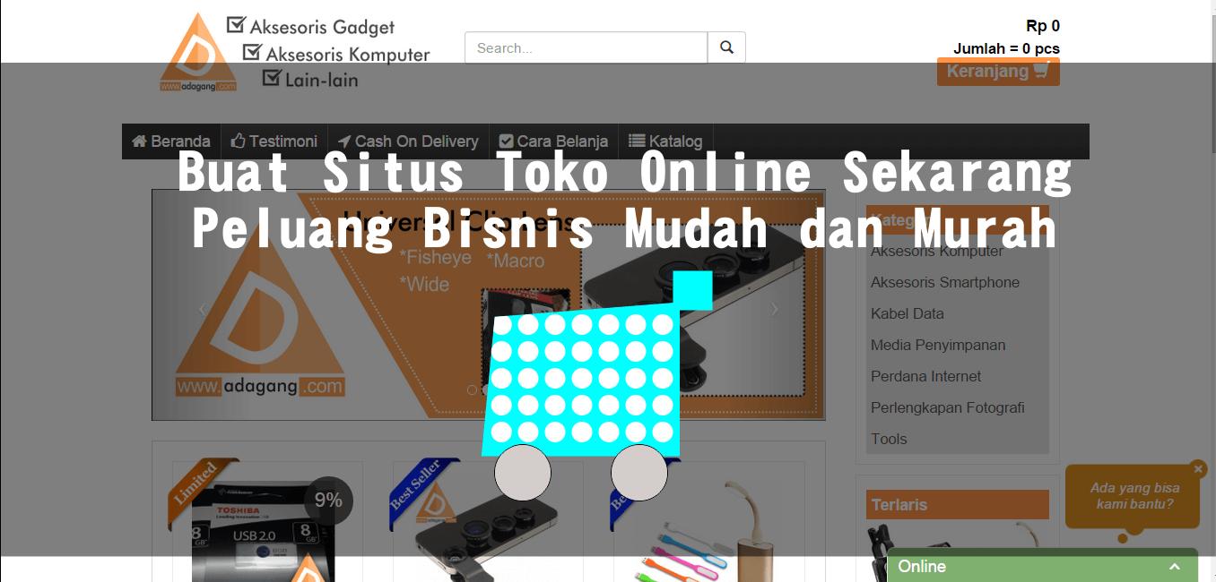 Buat Situs Toko Online Sekarang, Peluang Bisnis Mudah dan Murah