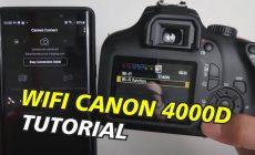 Permalink ke Cara Memindahkan Video Dari Kamera DSLR/Mirrorless ke Smartphone Tanpa Laptop